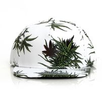 Cayler & Sons cap snapback Mitchko white / green / silver