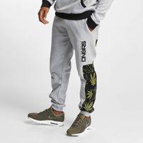 Dangerous DNGRS / Sweat Pant Health in gray